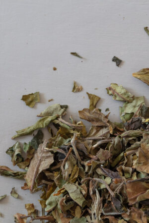 Northern Grace organic white tea Pai Mu Tan loose tea