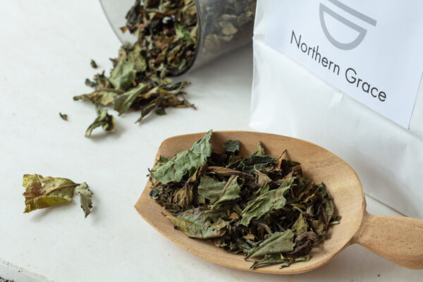 Northern Grace økologisk hvid te løs te Pai Mu Tan