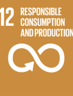 THE UN's SUSTAINABLE DEVELOPMENT GOALS SDG 12 Responsible consumption and production