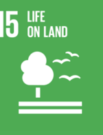 THE UN's SUSTAINABLE DEVELOPMENT GOALS SDG 15: Life on land