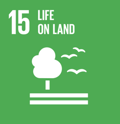 FN's verdensmål for bæredygtighed